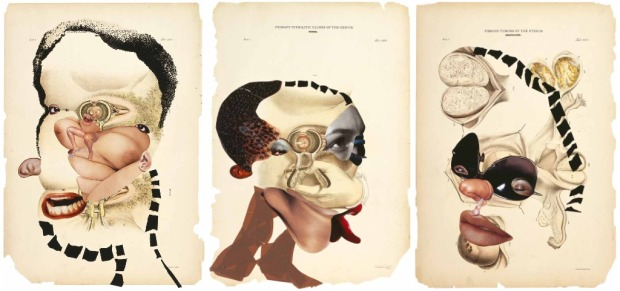 Wangechi Mutu. Various collages on medical diagrams (2005). Courtesy The Saatchi Gallery (London).